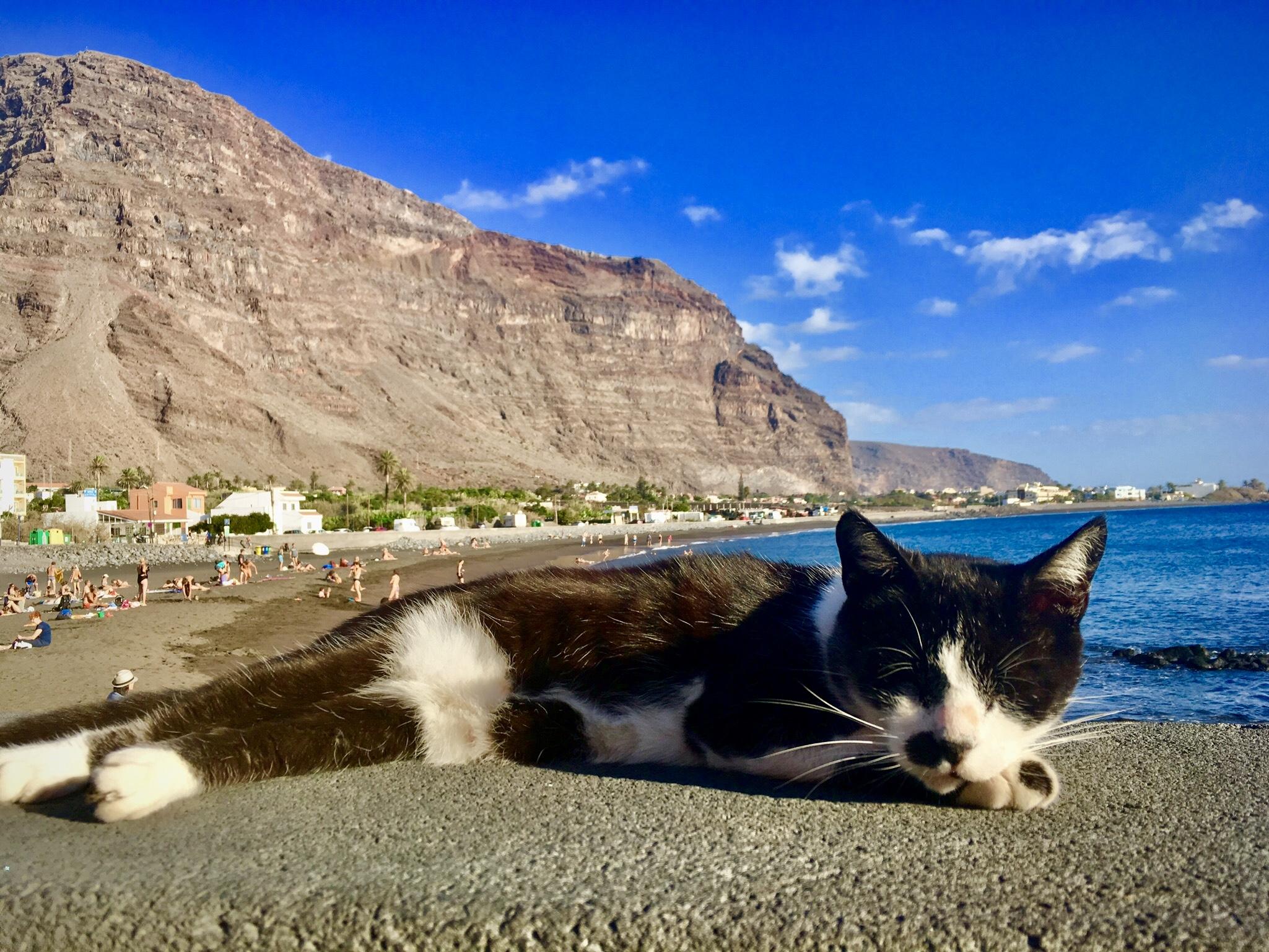 La Gomera: Die Insel der Entspannten