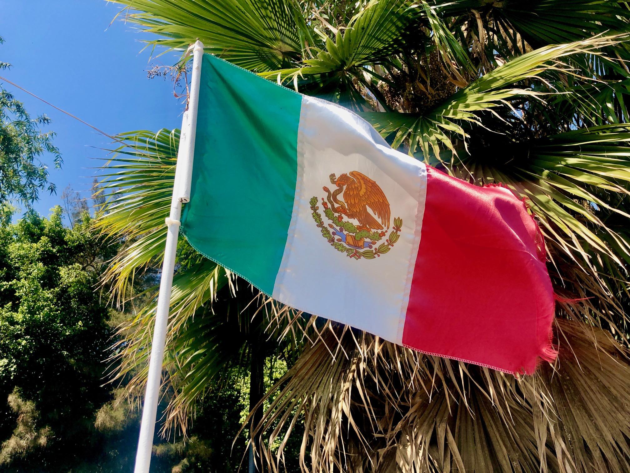 Fiesta Mexicana! Unterwegs zwischen Tacos und Tequila