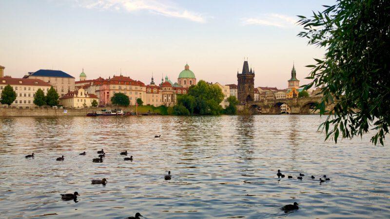 Bier, Burgen und Bären: das tschechische Böhmen